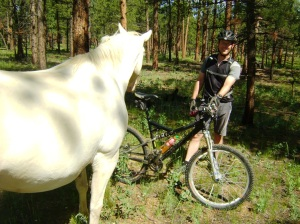 horse and ed